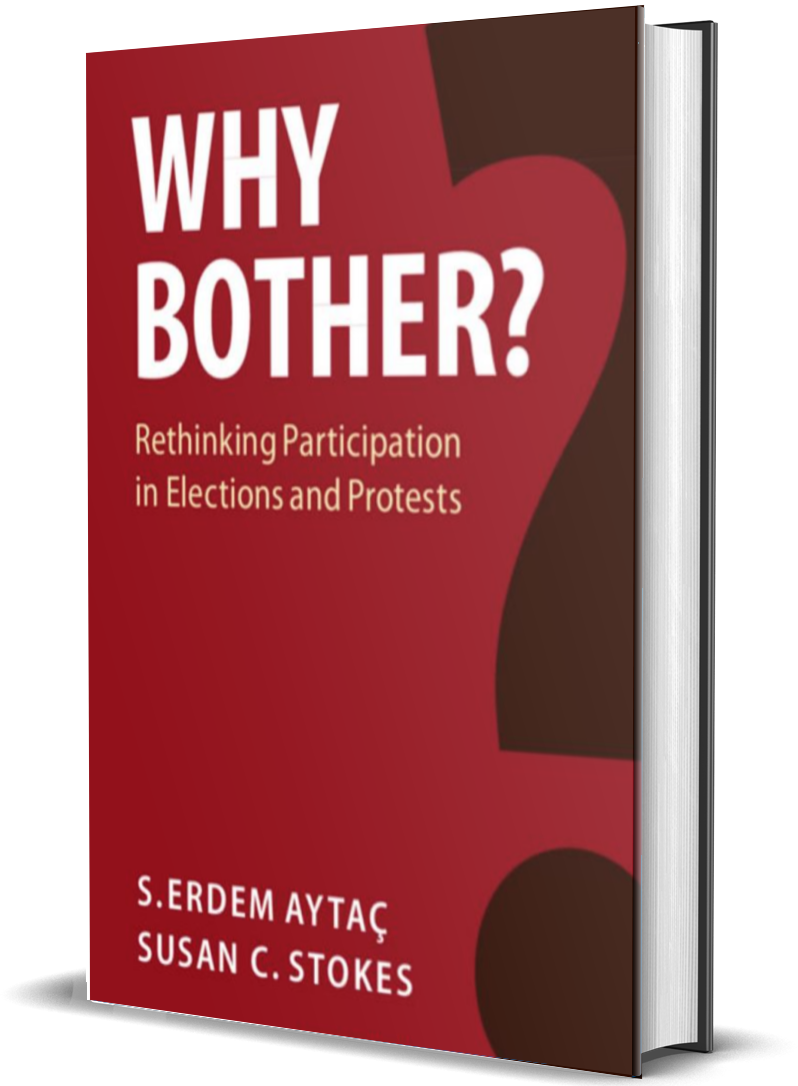 Why Bother?: Rethinking Participation in Elections and Protests