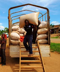 Farmers in Uganda
