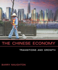 The Chinese Economy: Transitions and Growth